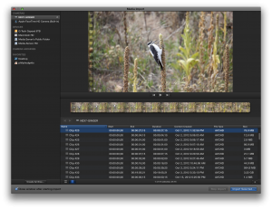 Final Cut Pro X's unified Import dialog