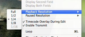 Playback resolution determines overall performance.
